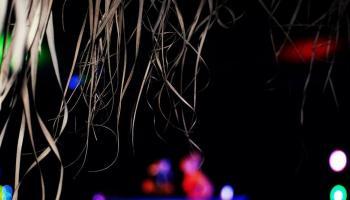 Reborn Festival, Stergios Salamousas