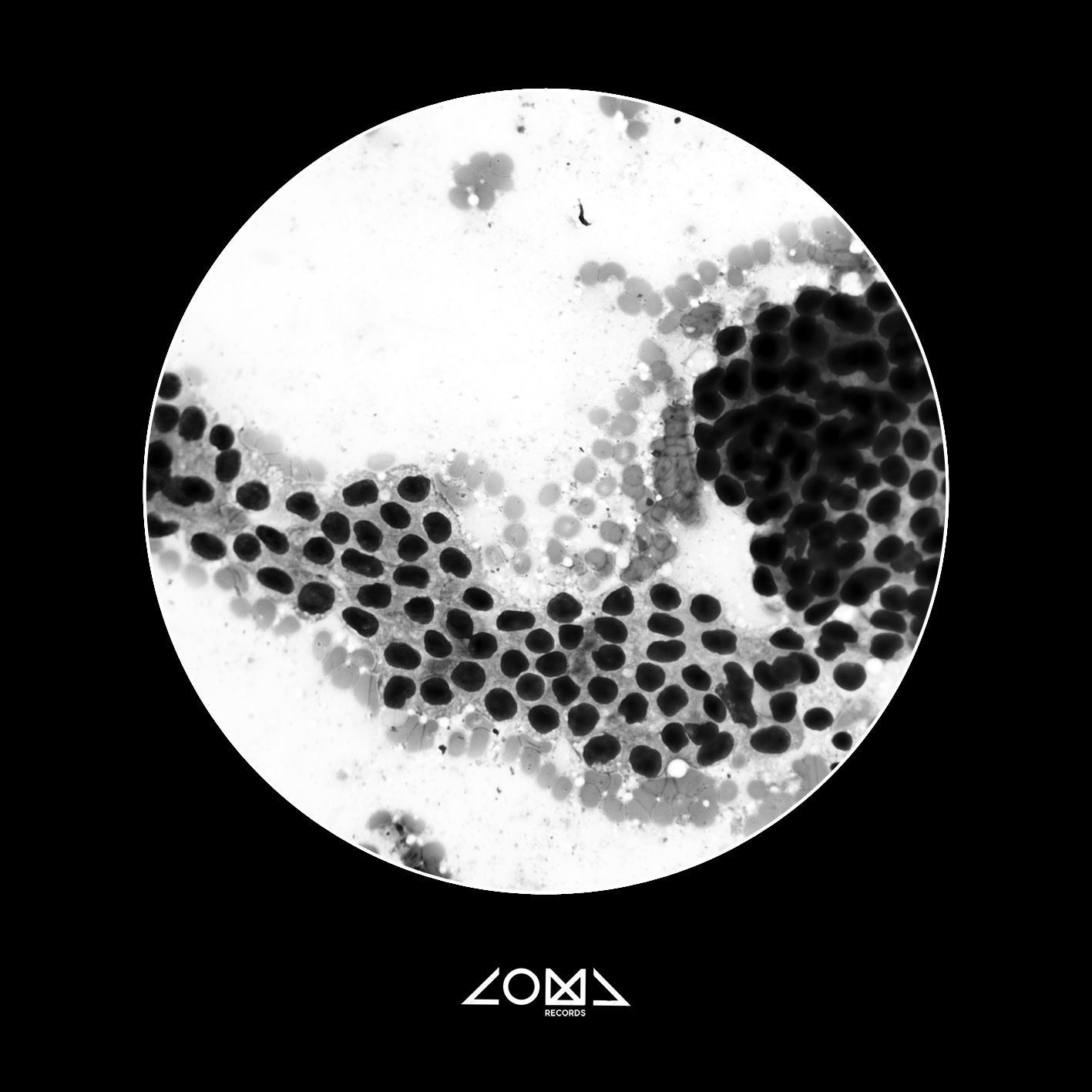 Press release - Coma Records