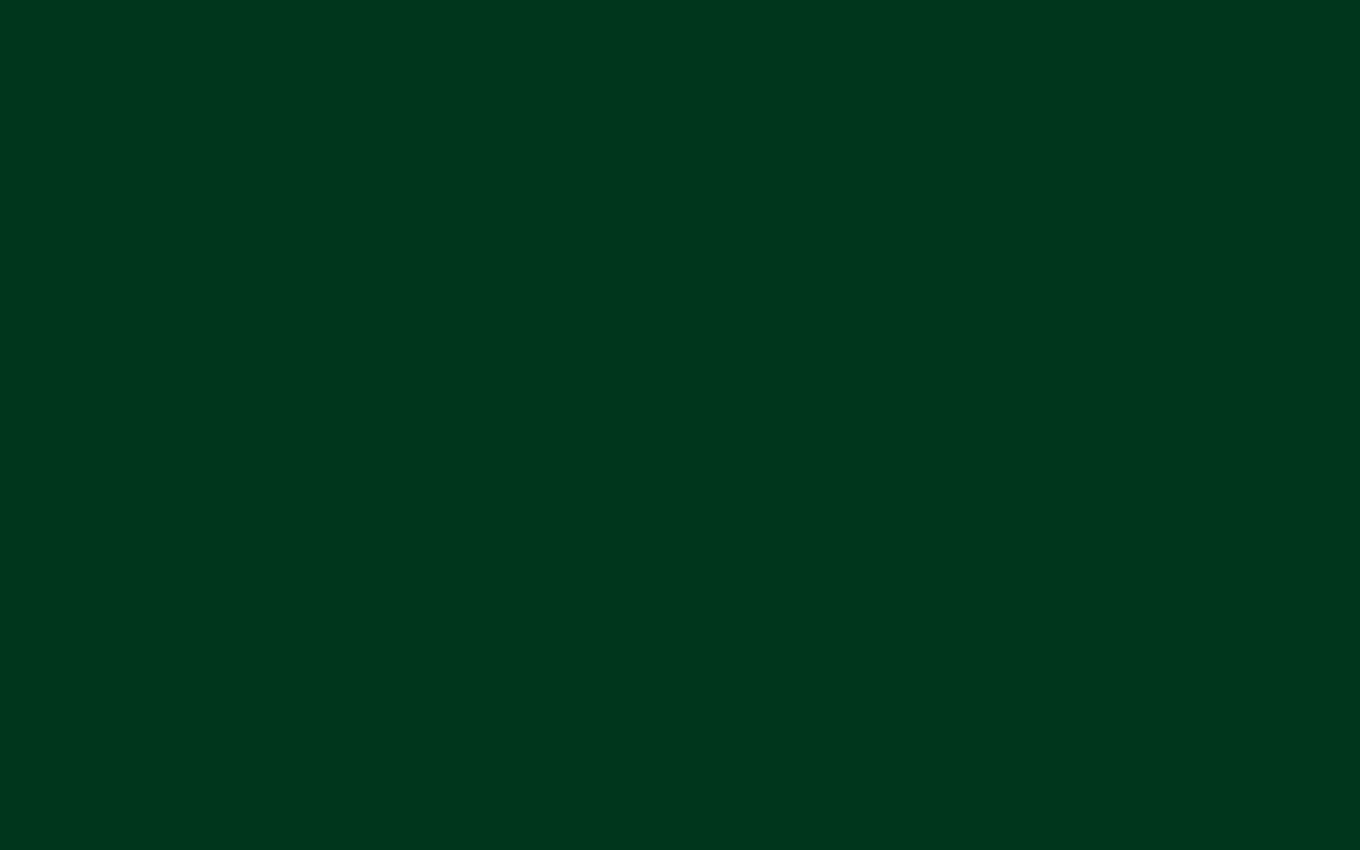 Steve o'sullivan - Green trax