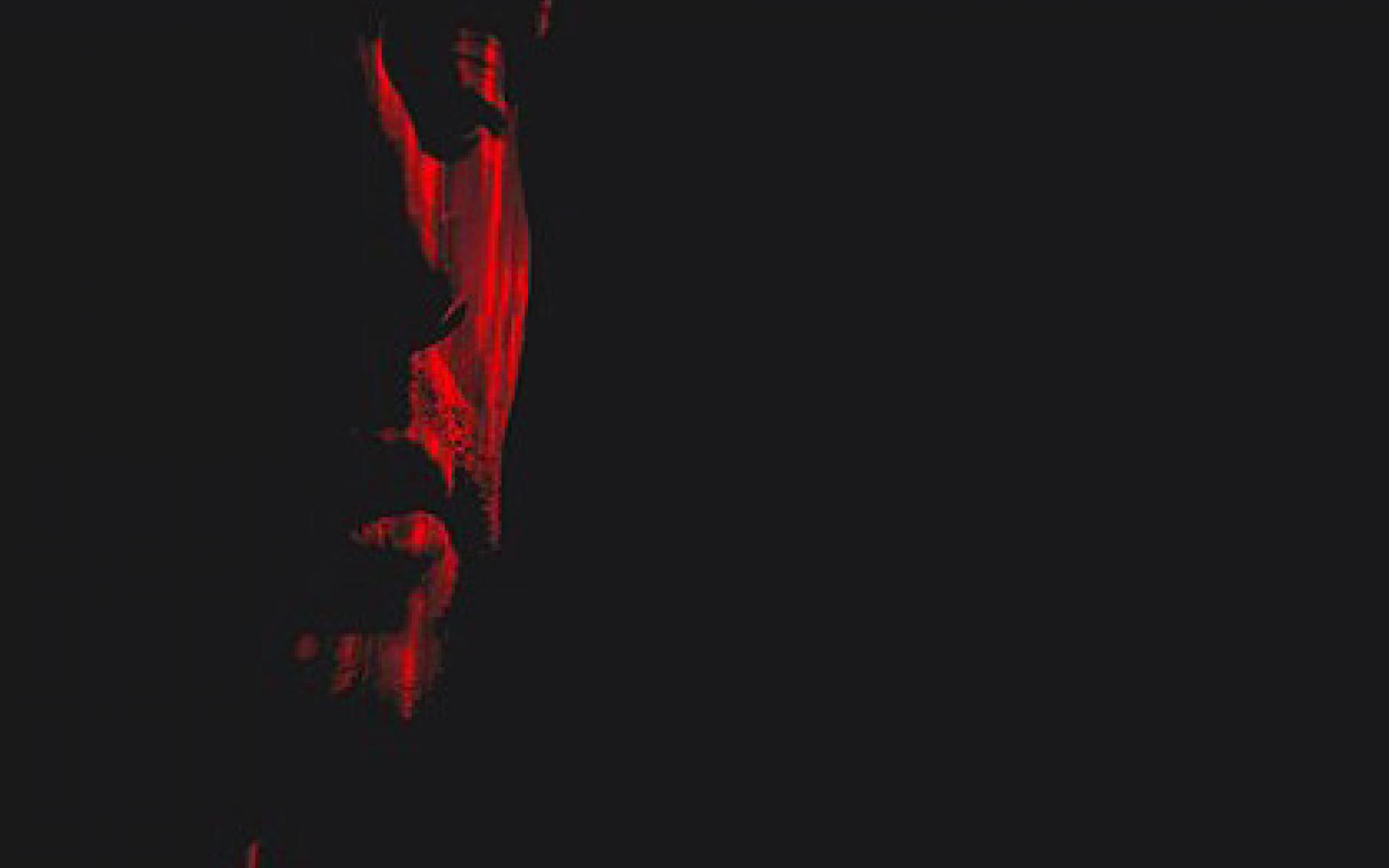 Anthony Rother - Album XDJ-MIX