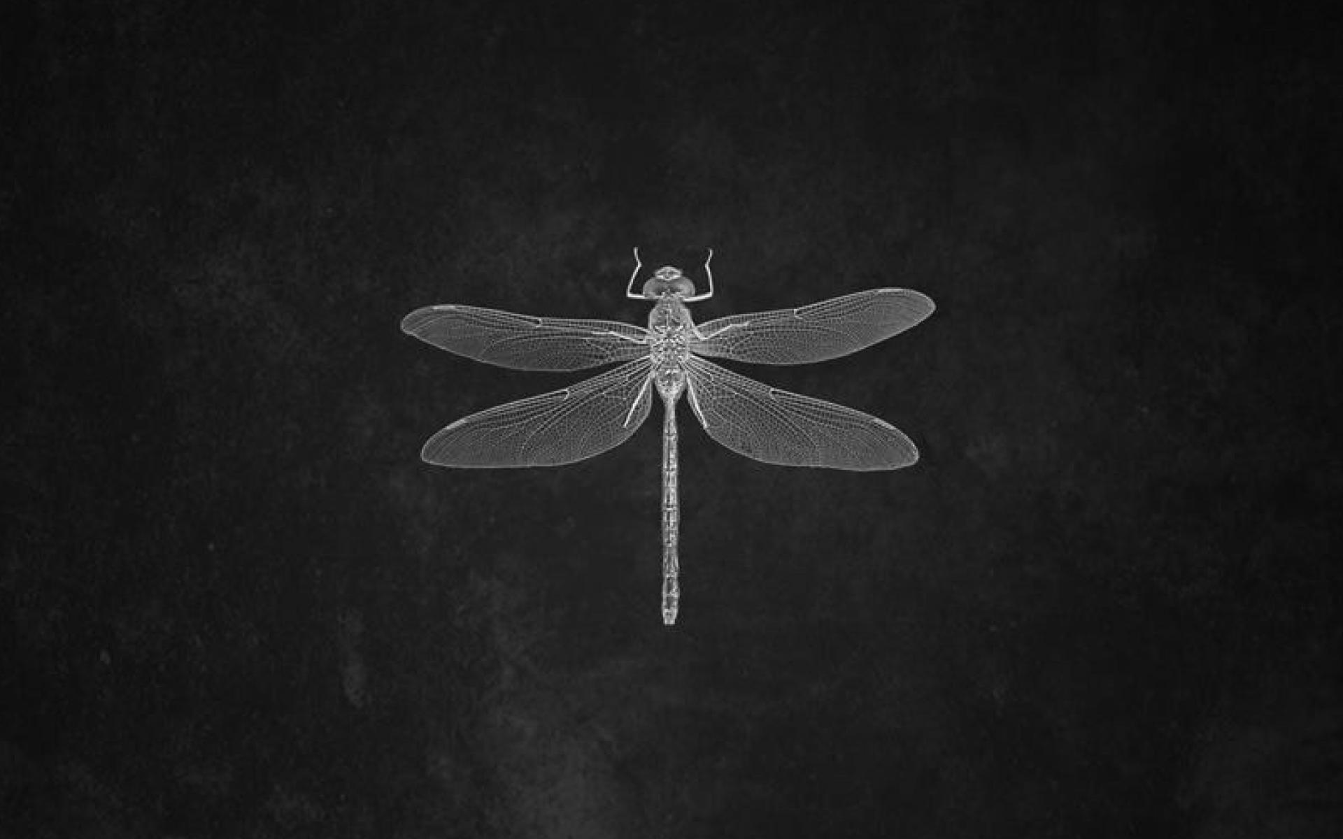 OLSEN Alone Feat. Nat Conway - OLSEN