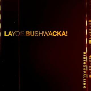 Layo & Bushwacka - Rising and Falling (album)